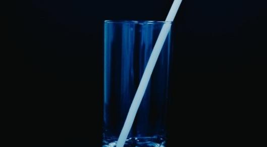Partner show danimer straw plant