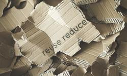 Browse partner startups recycling