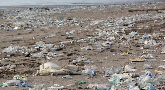 Partner show pixabay enviroment beach pollution