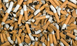 Browse partner cigarette buts