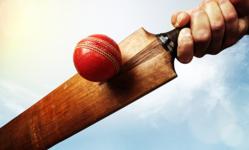 Browse partner cricketbat