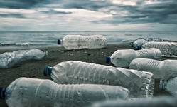 Browse partner plastic bottle shutterstock