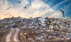 Browse partner ai waste management robots